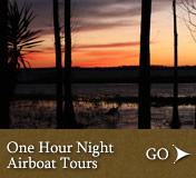 Boggy Creek One Hour Night Airboat Tours